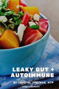 The Connection Between Leaky Gut + Autoimmune Disease